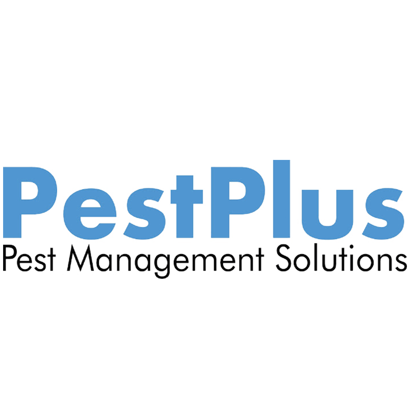 Pest Plus Pest Management Solutions